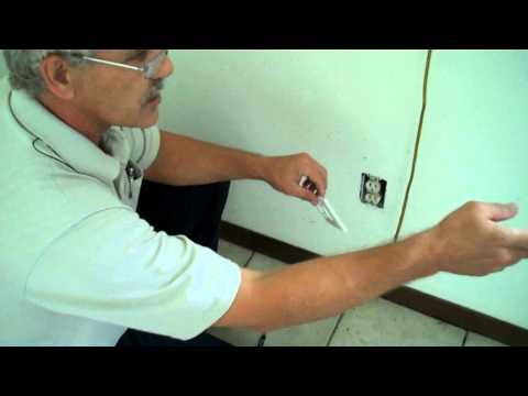 How To Deal With Ants In The Wall