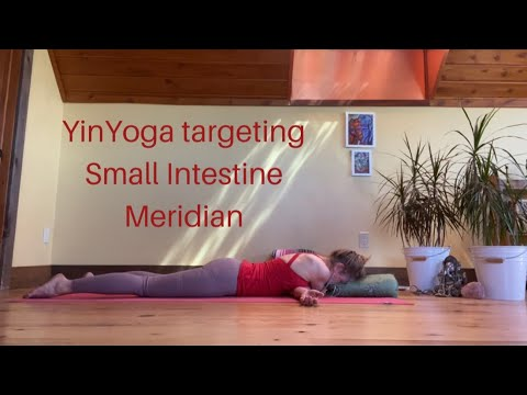 yin yoga with intention to health for small intestine