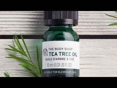 Tea Tree Oil زيت شجرة الشاي 5 استعمالات تجميلية لزيت شجرة الشاي Beauty Uses Of Tea Tree Oil Youtube