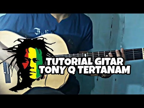 Tony Q - Tertanam | Tutorial Gitar Full