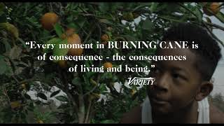ARRAY39s BURNING CANE Official Trailer  Directed by Phillip Youmans