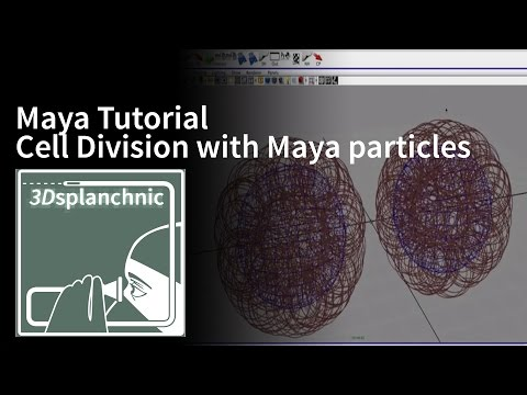 Cell division with particles in Maya