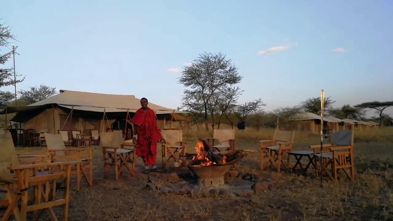 Serengeti acacia camps Tanzania