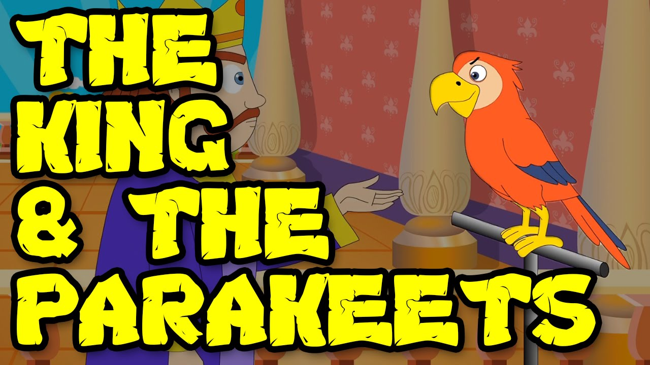 Animated & Cartoon Stories For Kids || The King and the Parakeets