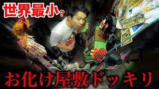 【都市伝説】人形だらけの公衆電話に入ったら怖すぎる体験ができるらしい?【ドッキリ】