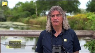 how to Adjust Your Binoculars (Presented by Nikon Canada)