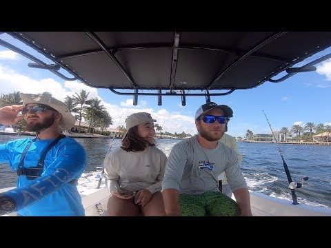 Offshore Charter Fishing! King, Bonita, Snapper, & More! Off Hillsboro Inlet & Pompano Beach!