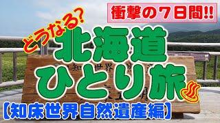 【北海道の旅3日目】 世界自然遺産の知床半島に行ってみた! 羅臼昆布のラーメン喰って、花咲ガニと温泉卵喰った。 キタキツネの実物を見て実在する生き物だってこと ...