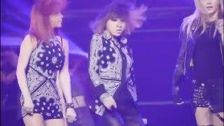 2NE1 투애니원 I AM THE BEST LIVE MINZY CAM