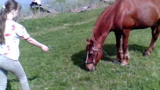 Девочка мустанг (часть 2))) Покормили дикую лошадь!!!