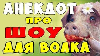 АНЕКДОТ про Глупого Волка и умную Свинью и Шоу в Лесу Самые Смешные Свежие Анекдоты