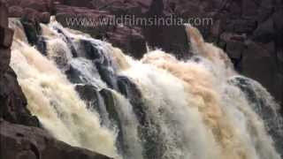 The Greatest waterfalls of India!