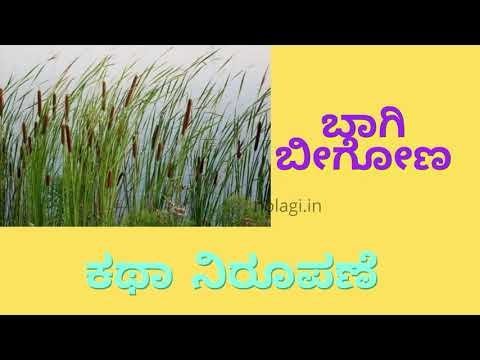 ಬಾಗಿ ಬೀಗೋಣ | ಕಥಾ ನಿರೂಪಣೆ | Baagi Beegona | Audio Book