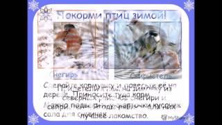 Проект Живая природа зимой.Окружающий мир 2 класс
