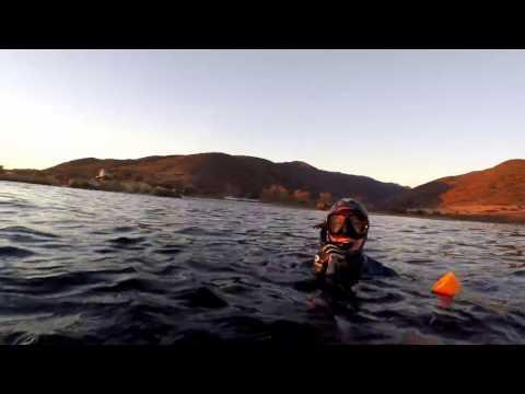 Freedive Spearfishing Malibu
