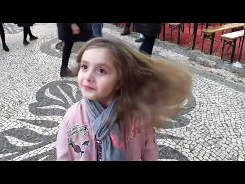 Corujas em Lisboa!