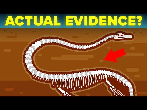 Scientists Find Best Evidence That The Loch Ness Monster Actually Exists?