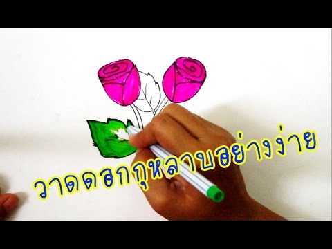 วาดดอกกุหลาบง่ายๆ สวยๆ rose drawing