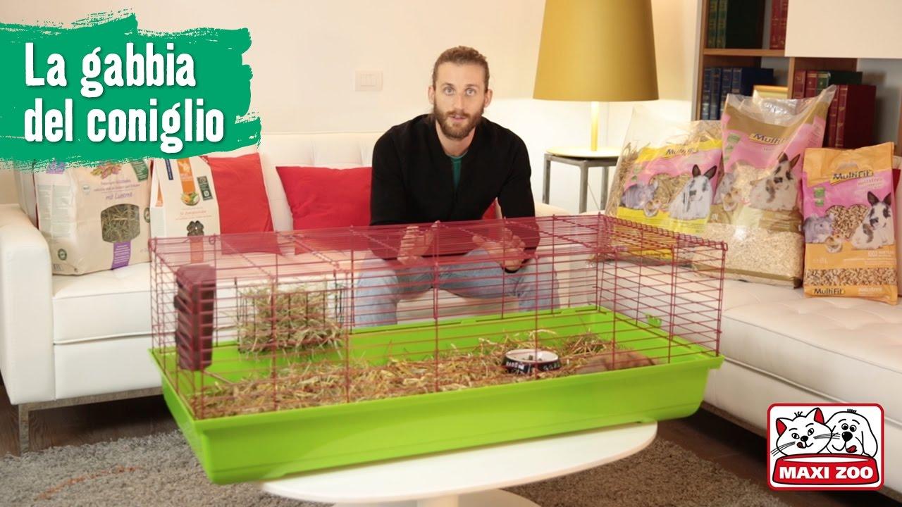 Tutorial preparare la gabbia del coniglio maxi zoo for Youtube la gabbia