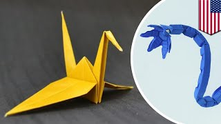 Soft robots: Origami inspired robotic limbs can lift 1,000 times their weight - TomoNews