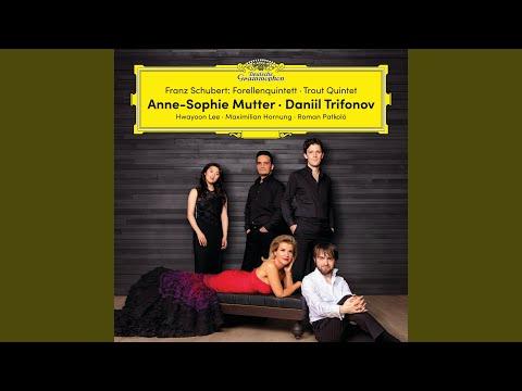 Schubert: Ellens Gesang III, Op. 52, No.6, D 839 - Ave Maria In B Flat Major (Arr. For Violin...