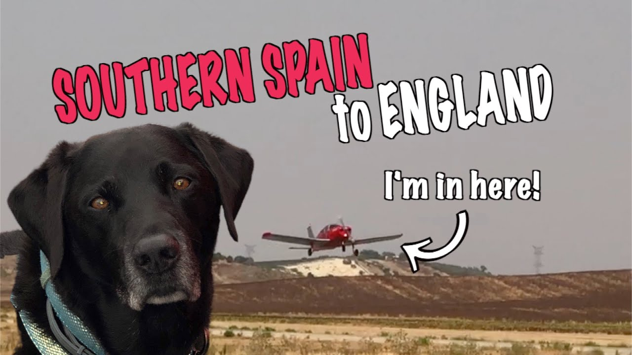 Flying to England with our dog Percy the Labrador in a Private Plane -Piper Cherokee G LTFB