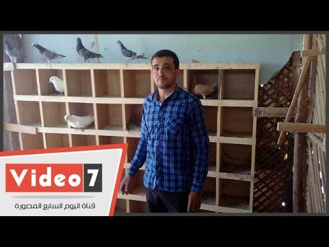 بالفيديو..شاب بالوادى الجديد ينجح فى تحويل هواية تربية الحمام إلى مشروع إنتاج حيوانى وداجنى  - 15:21-2017 / 4 / 25