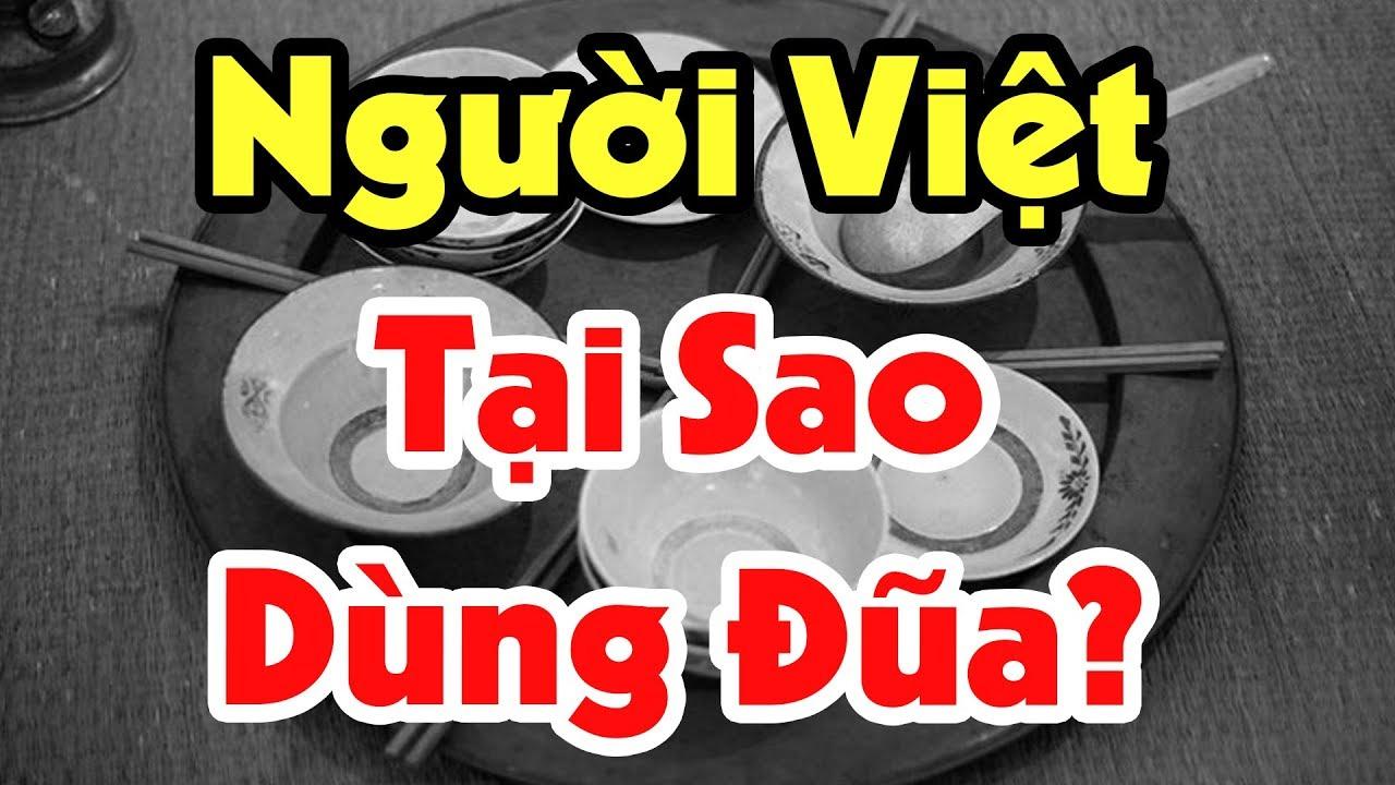 Bí Ẩn Đằng Sau Đôi Đũa Người Việt Dùng Để Ăn Hàng Ngày, Lịch Sử Thú Vị Của Những Đôi Đũa