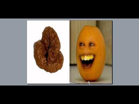 Why Is My Poop Orange