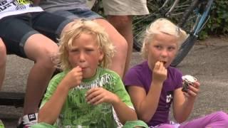 Zomer - Aalt Westerman - Nieuwleusen - DVD