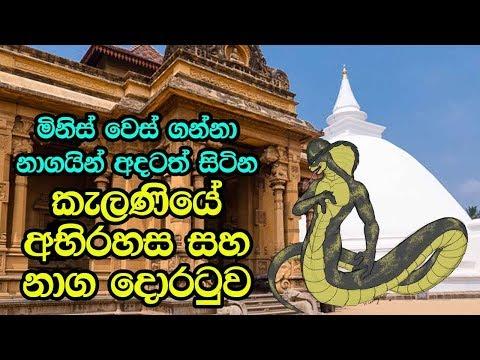 මිනිස් වෙස්ගන්නා නාගයින් අදටත් සිටින කැළණියේ අභිරහස - History Of Kelani Raja Maha Viharaya
