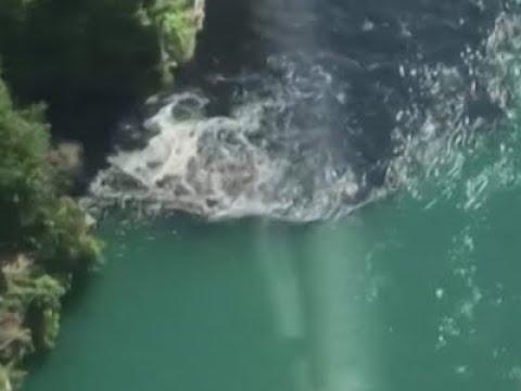 Smelly, Black Discharge At Niagara Falls