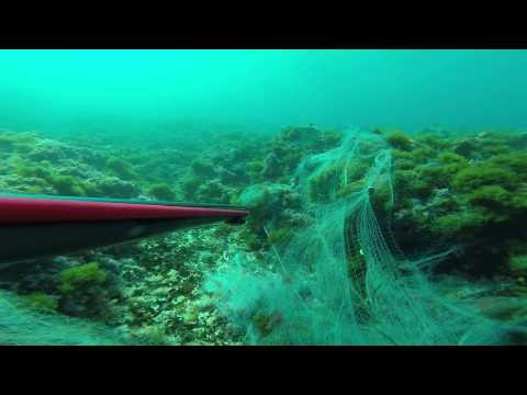 Fishing net - Parit