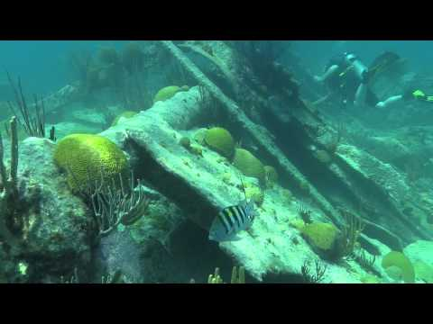 The Darlington Wreck Dive June 12, 2014