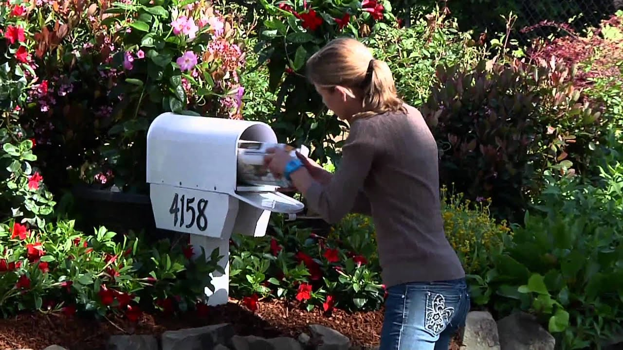 create mailbox garden with sun
