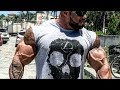 When Bodybuilders Go To The Beach Summer Body mp3