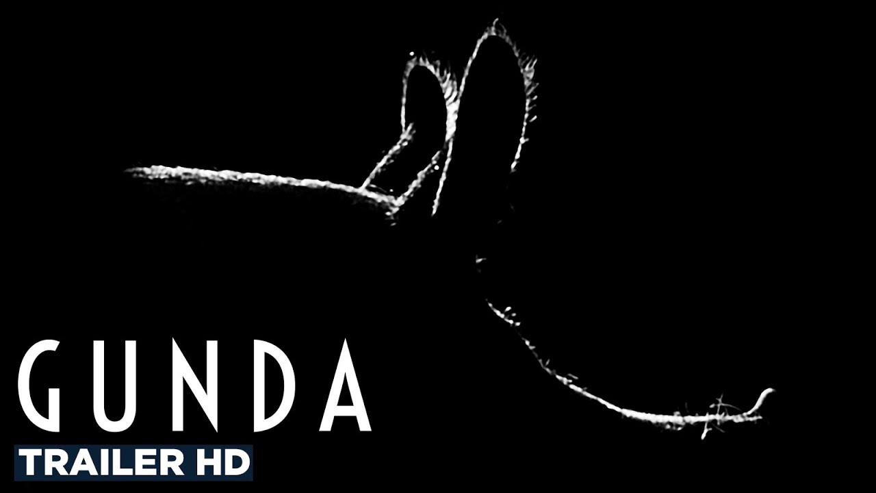 "Militant de la cause animale, Joaquin Phoenix a produit ""Gunda"", un documentaire pro-vegan"