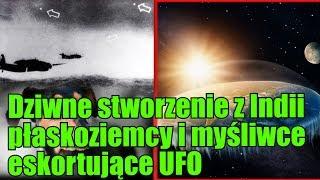 Drapieżnik z Indii, wielki australijski spisek płaskoziemców i UFO w asyście myśliwców