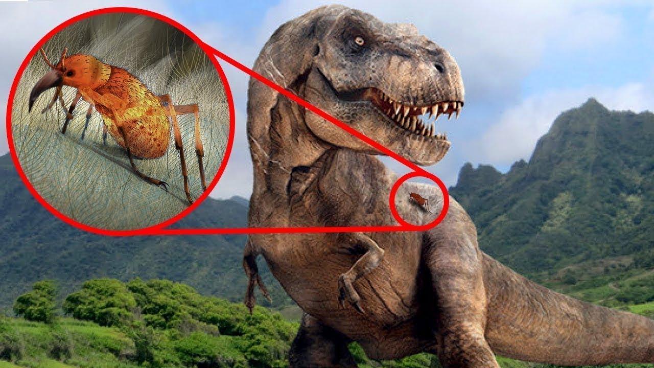 Dinozorlar Üzerinde Yapılan Bu Keşif Herkesi Şaşkına Çevirdi