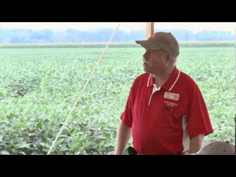Fungicide and Insecticide Inputs