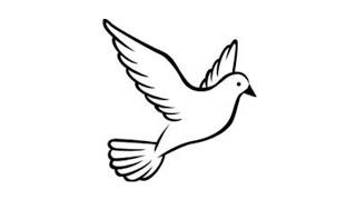 فنون الرسم شاهد كيفية رسم حمامة السلام الرائعة Youtube