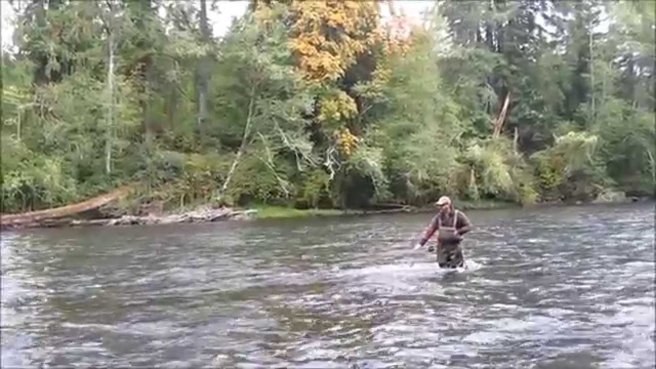 Dec hogan spey fishing the mckenzie river for summer for Mckenzie river fishing