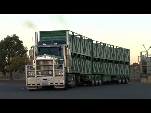 Kenworth T908 at Huntly.  Tue 29/05/12