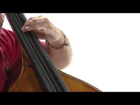 El Contrabajo - Video Cápsula Didáctica - SiNEM