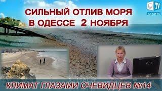 Сильный отлив моря в Одессе 23 ноября. Климат глазами очевидцев № 14