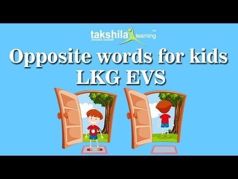 LKG EVS Online Classes | Worksheet | NCERT Solutions | CBSE | Online School  Classes