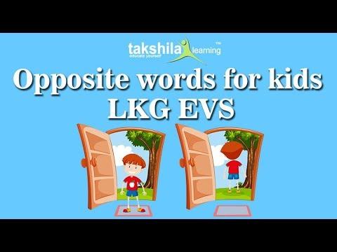 Lkg Evs Online Classes