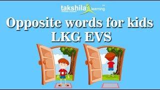 LKG EVS Online Classes | Worksheet | NCERT Solutions | CBSE | Online School Classes