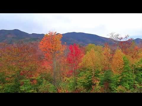 Vibrant fall color along Kancamagus Highway in New Hampshire