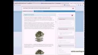 Программа для автоматического заработка   как заработать 1000 рублей за 10 минут